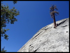 02-L1-Dome rock-Tree route-DSC01247 by Paola